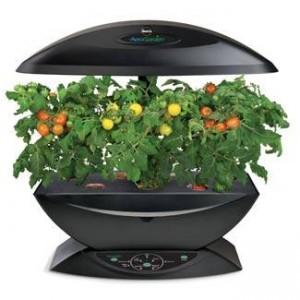Amazon best bargain miracle gro aerogarden indoor garden for Indoor gardening amazon