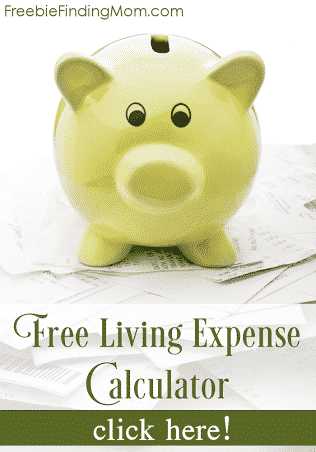 Free Living Expense Calculator - Here's a quick and easy way to find out how you are doing each month with your finances.