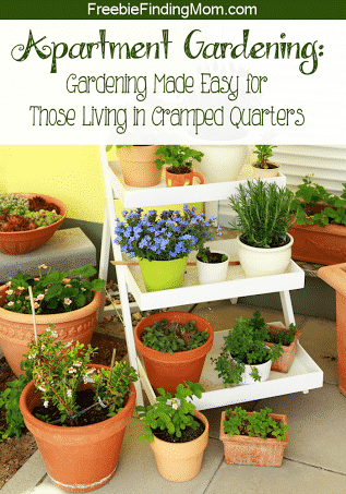 Apartment Gardening - Even with limited space you can enjoy a bounty of delicious fruits, vegetables and herbs. Find out how to make the most of your cramped quarters with these DIY gardening tips.