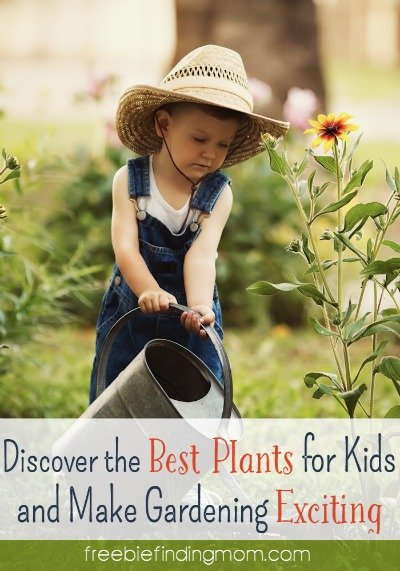 Discover the Best Plants for Kids and Make Gardening Exciting - Encourage your little helpers to embrace gardening. Here are tips to help motivate them along with some of the best plants for kids to grow.