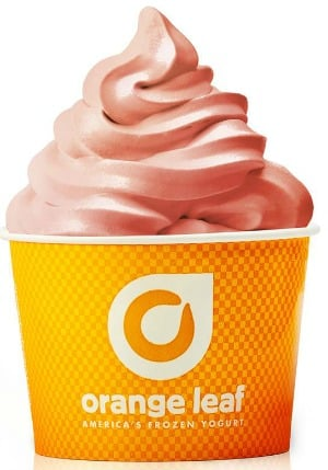 Orange Leaf Frozen Yogurt: Buy One Get One FREE Frozen Yogurt on June 4