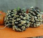 Easy Fall Crafts Using Pine Cones: Homemade Pine Cone Bird Feeders