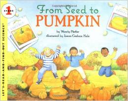 Preschool Halloween Book 4 - From Seed to Pumpkin
