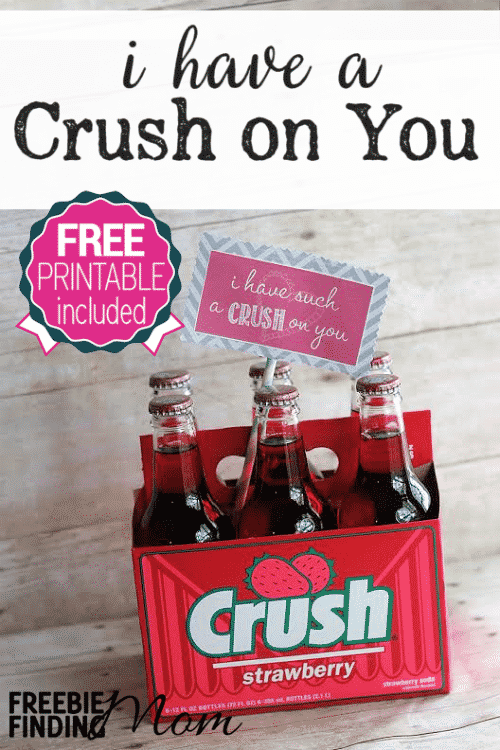 Valentine S Day Diy Gifts I Have A Crush On You Gift With Free Printable Tag