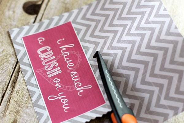 Valentine's Day DIY Gifts: I Have a Crush on You Gift 2