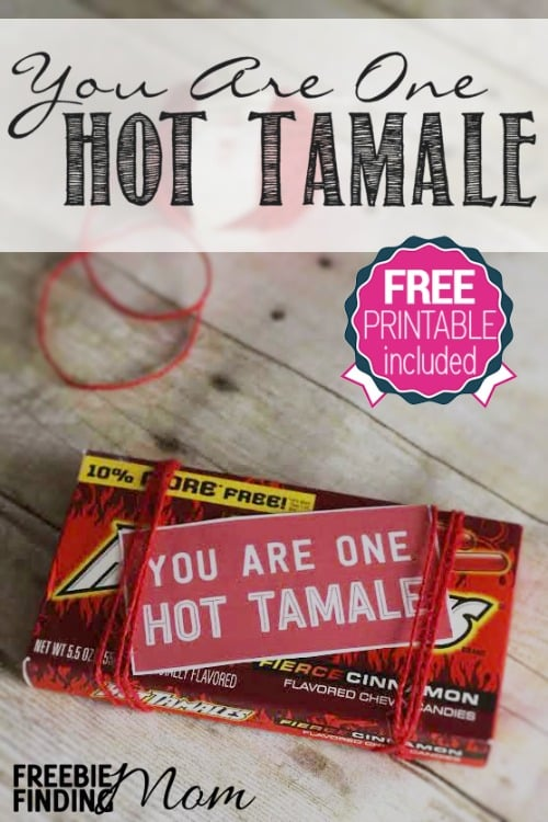 "You Are One Hot Tamale DIY Valentine's Day Gift - Need an easy, cheap and fun DIY Valentine's Day gift idea? How about reminding your sweetie how ""hot"" they are by giving them this You Are One Hot Tamale Valentine's Day DIY Gift? Simply grab a box of hot tamales and attach the free printable gift tag provided. Voila! You have an easy peasy homemade Valentine's Day gift that is guaranteed to make your sweetie smile."