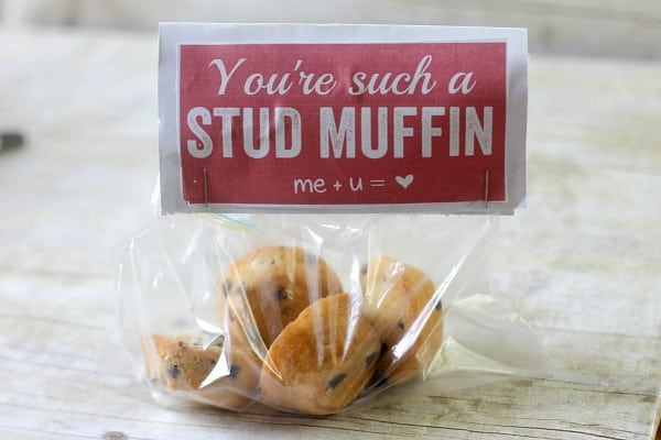Valentine's Day DIY Gifts: You're Such a Stud Muffin Gift with FREE Printable Gift Tag 4