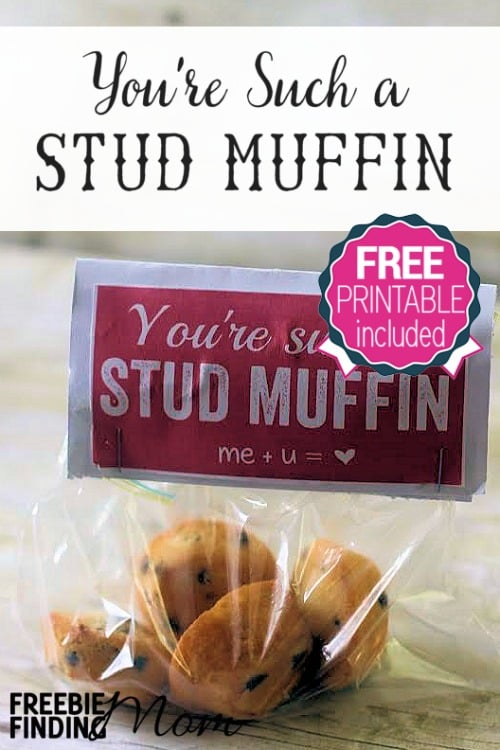 "You're Such a Stud Muffin DIY Valentine's Day Gift - There's no need to break the bank to tell your ""stud"" how you feel this Valentine's Day. Load up a bag with mini muffins or one large muffin and attach the free printable tag to make this easy, cheap yet thoughtful Valentine's Day DIY gift."