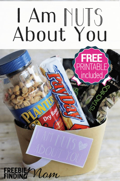 "I Am Nuts About You DIY Valentine's Day Gift - This Valentine's Day tell your sweetie how ""nuts"" you are about him with a homemade gift basket loaded with his favorite nut based snacks and treats. Then simply attach the free printable gift tag. Voila! Within minutes you have a fun yet frugal Valentines Day DIY gift that will satisfy your Valentine's cravings without breaking the bank."