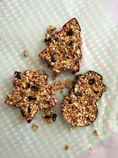 Homemade Bird Feeders - Cookie Cutter Bird Feeders Step 7