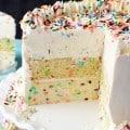 Funfetti_Millionaire_Cake4