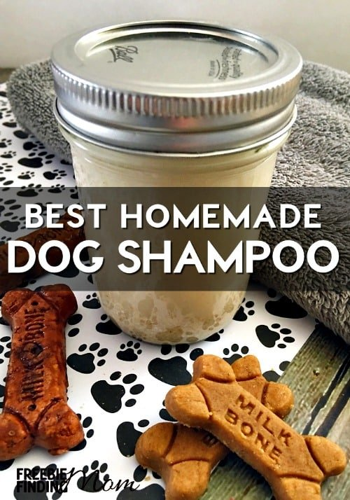 Best homemade dog shampoo all natural oatmeal dog shampoo - How to make shampoo at home naturally easy recipes ...