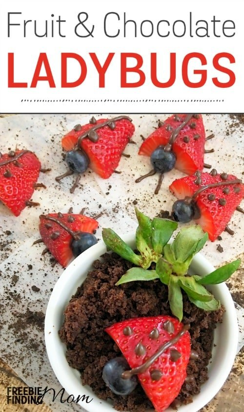 """Need a creative way to get your picky eater to consume more fruit? These fun kid snack ideas for fruit and chocolate ladybugs are sure to do the trick. Simply grab strawberries, blueberries, and a bag of chocolate wafers to make this easy, delicious, and healthy snack or dessert for kids. You can even crumble chocolate cookies (I used Oreos) to make the """"dirt."""" These cute critters also make great sweet treats for a ladybug birthday party."""