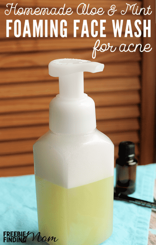 Homemade Aloe & Mint Foaming Face Wash