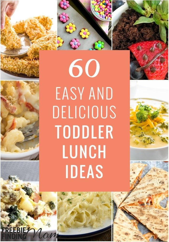 Do you need toddler lunch ideas? Here are 60 Easy and Delicious Toddler Lunch Recipes that even your picky eaters will love. You'll also find toddler breakfast ideas, toddler snack ideas, and toddler dessert ideas to inspire you and make feeding your kids easier, more nutritious, and delicious.