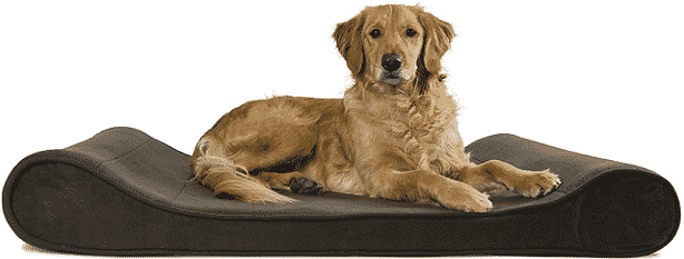 FurHaven Micro Velvet Luxe Lounger Pet Bed Bundle in use