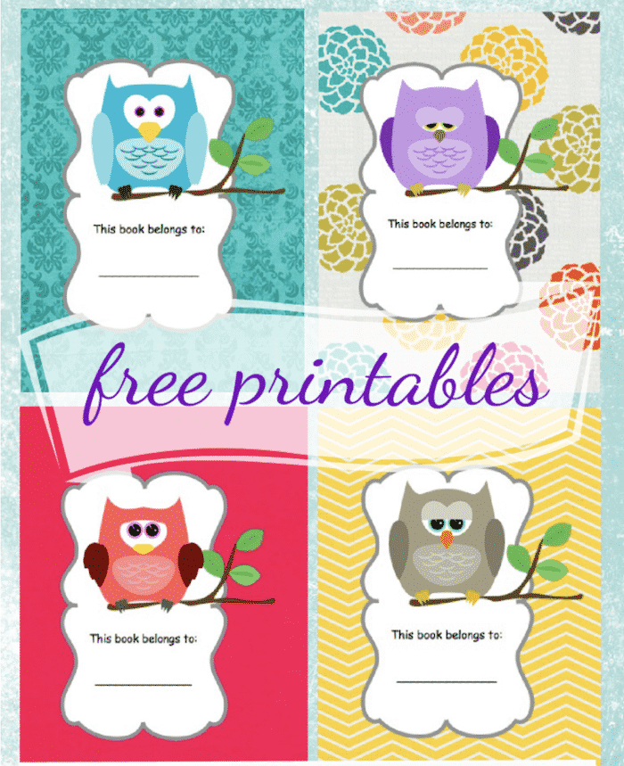 owl themed free printable book cover template