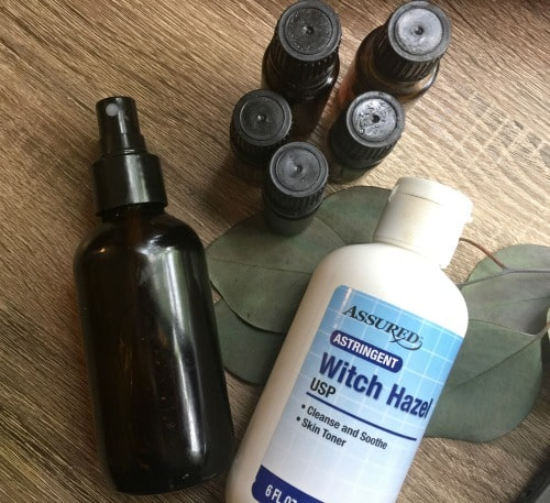 ingredients for homemade bug spray