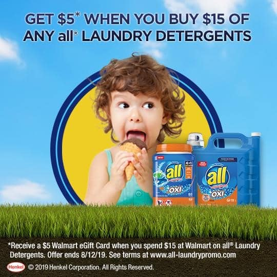 all laundry detergent promo