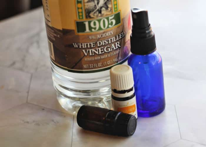 ingredients for homemade sanitizer