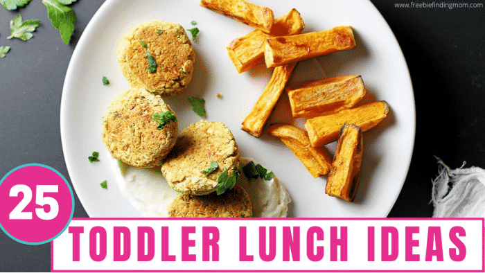 This list of toddler lunch ideas contains 25 recipes that are easy, healthy, and picky eater approved.