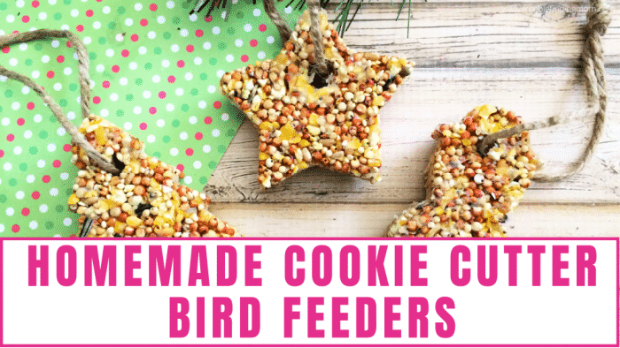 These easy cookie cutter bird feeders are the perfect cold or rainy day kids craft
