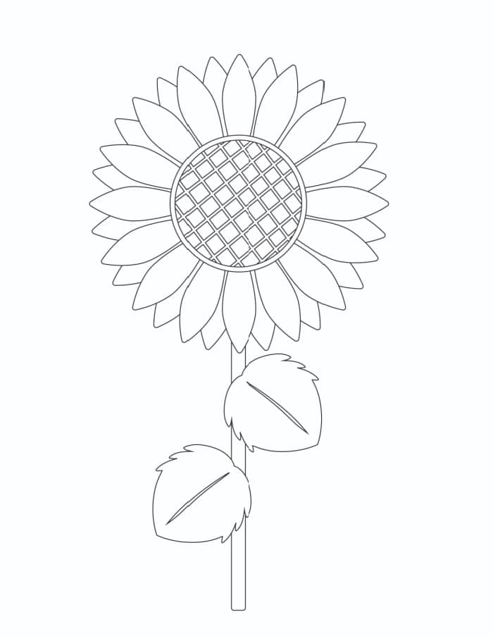 The large elements in this printable make it a great free printable paper sunflower template that you can trace.