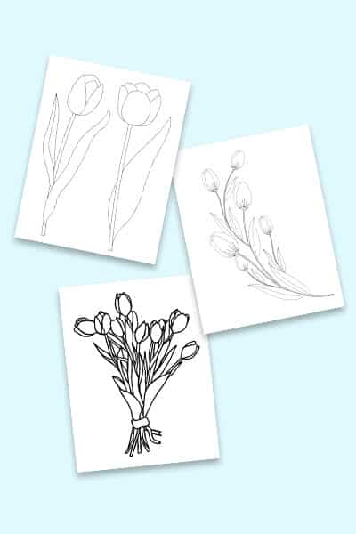 free tulip coloring pages to print