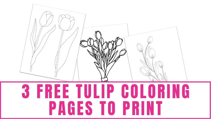 Not only will coloring these free tulip coloring pages to print help you relax, but when you are finished you have beautiful DIY home décor to proudly display.
