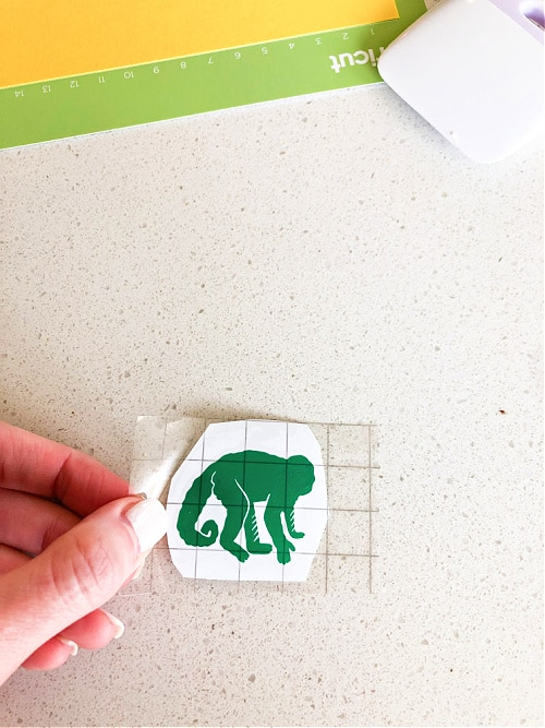 Place transfer tape over the cut out animals that will be part of your letter sound game.