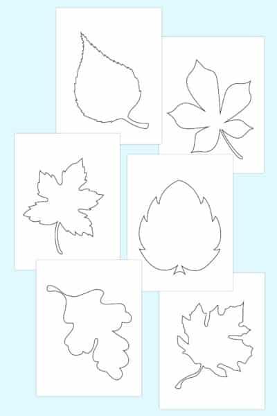 free fall leaf template printables