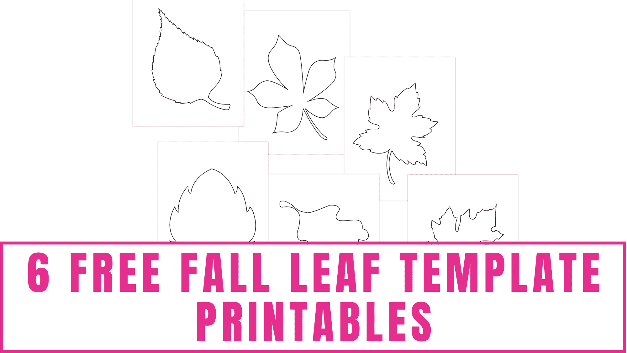These free fall leaf template printables can be used in fall crafts for kids or they make great free printable fall coloring pages for adults and kids.