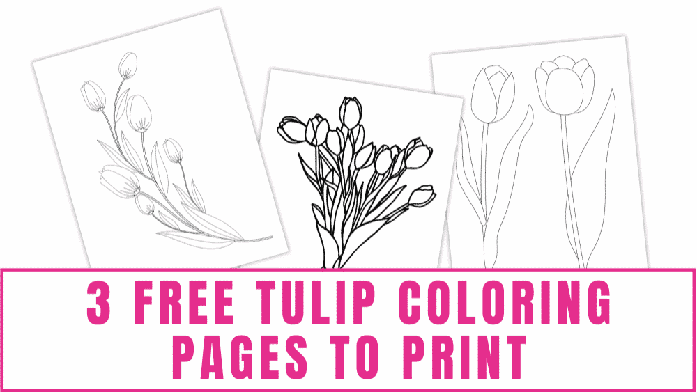 Need printable flowers to go with your printable leaves? These beautiful free tulip coloring pages to print not only make great coloring sheets, but you can use them in crafts as well.
