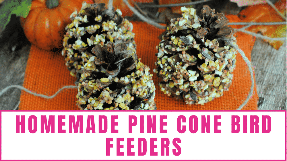 Homemade pine cone birders are an easy fall craft for kids that all ages will enjoy.